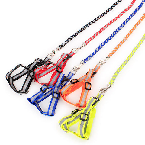Reflective Nylon Dog Harness and Braided Leash Set