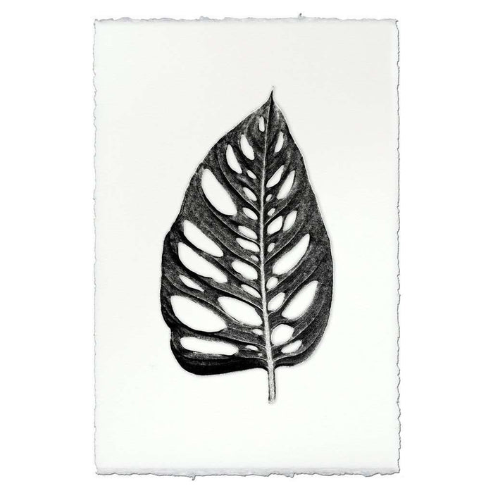 BARLOGA-CutOutLeafPrint  - Parent