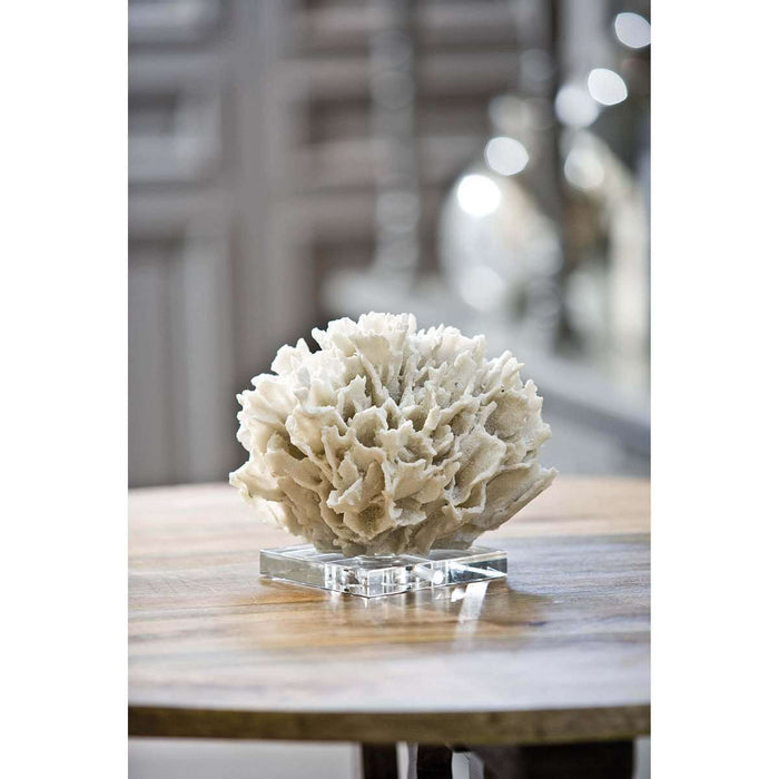 Ribbon Coral (White)
