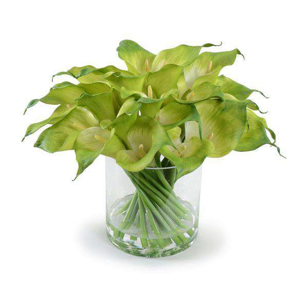 Green Calla Lily Arrangement