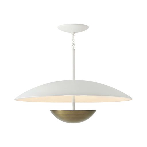 Floyd Pendant Light by Michael Berman