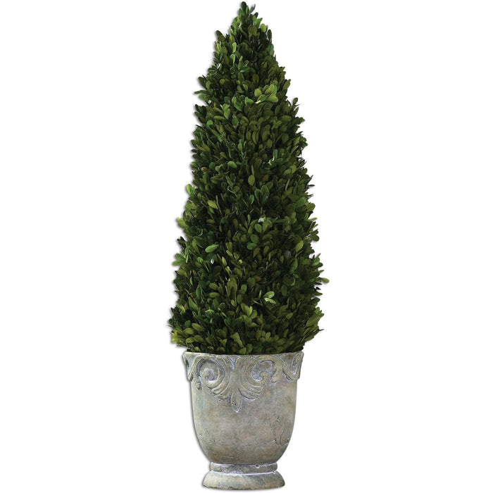 Uttermost Boxwood Cone Topiary