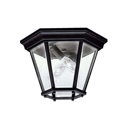 Madison Outdoor Ceiling 2 Light - Black