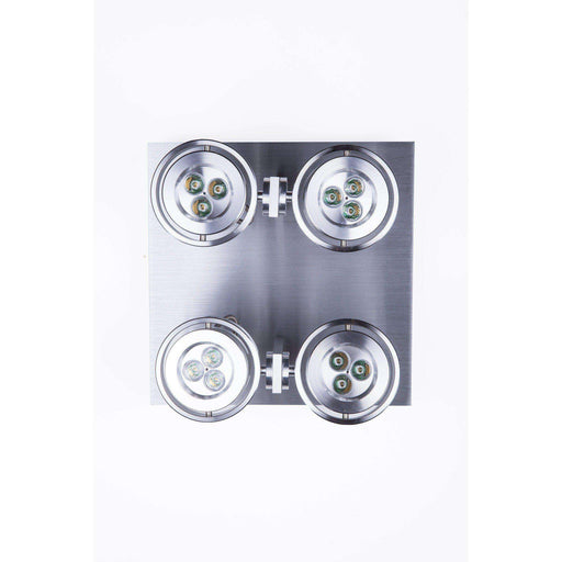 Modern Skelly LED Spotlight - Quad