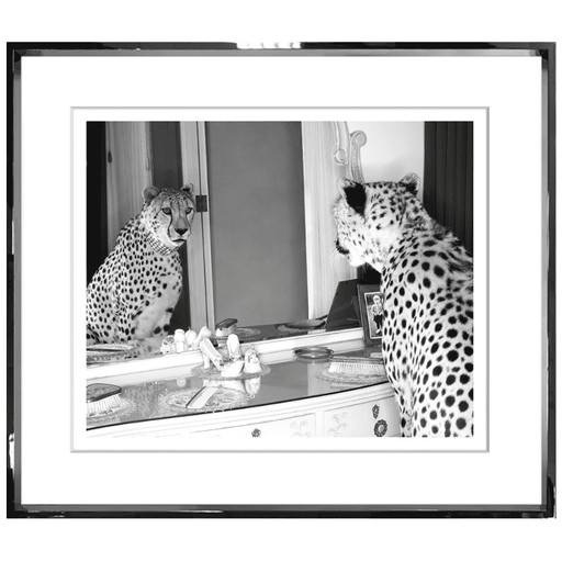 Cheetah who Shopped Archival Print