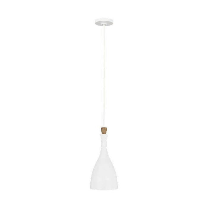 Darwin Small 1 Light Pendant