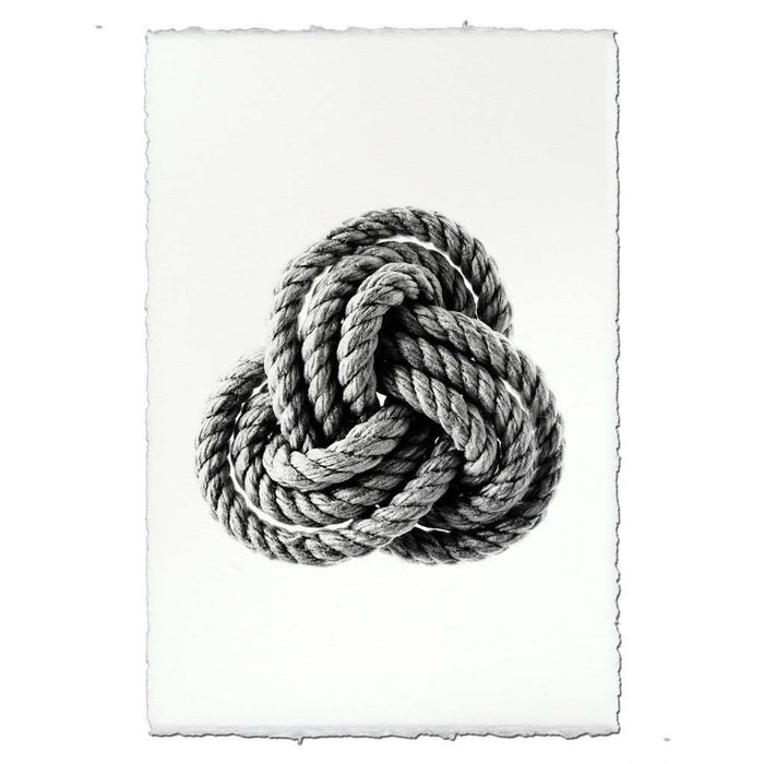 BARLOGA-CarrickKnotPrint  - Parent - carrick knot print