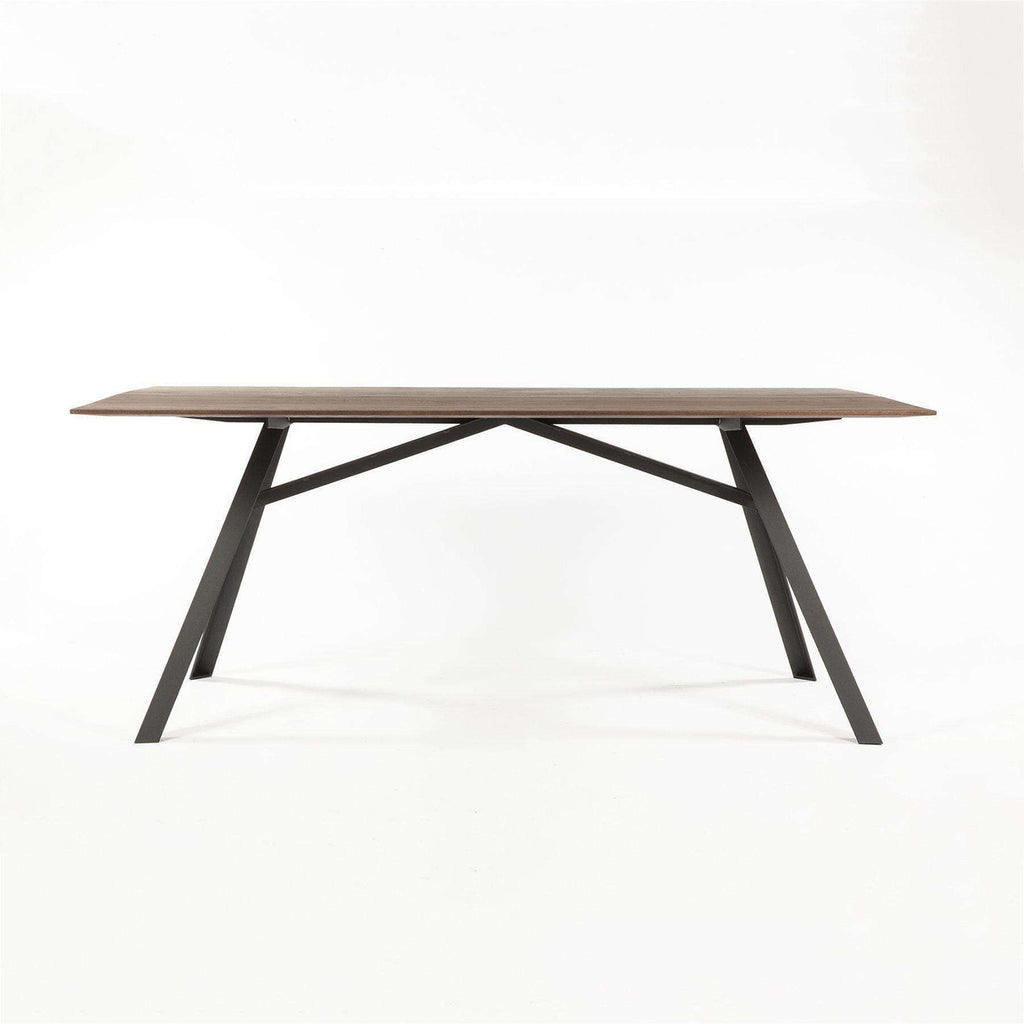 Modern Barnie Dining Table FST006WALNUT