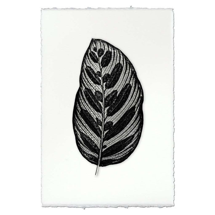 BARLOGA-RoundedDesignLeafPrint - Parent - rounded design leaf print
