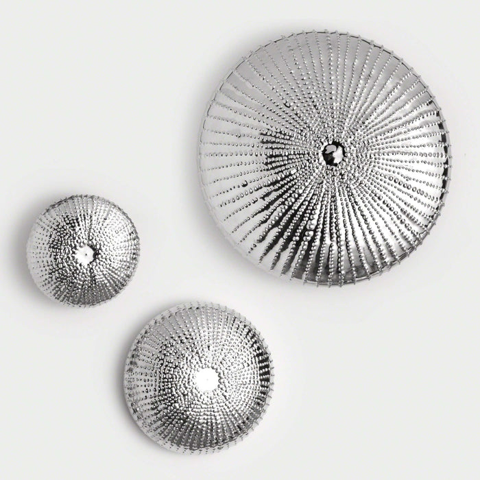Sea Urchin Wall Sculpture - Nickel - Med