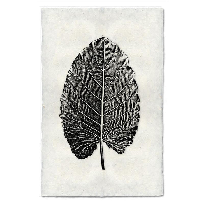 "Elephant Ear Leaf Print - Small 9"" x 14"""