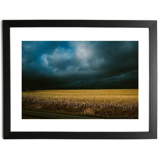 Cornfield - Limited Edition Framed Print