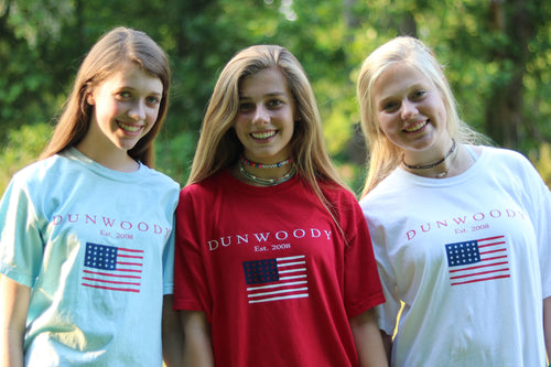 July 4th T Shirt (adult sizes)