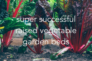 hacks for a successful organic veggie container garden