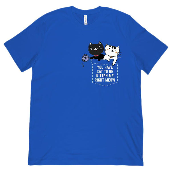 (Unisex BC 3001 Soft Tee) You Have Cat to be Kitten Me Right Meow (white) Graphic T-Shirt Tee BOXELS