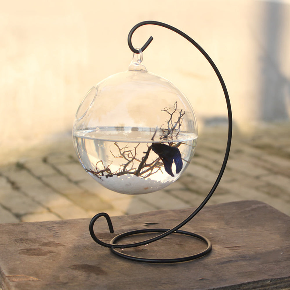 Contemporary Hanging Fishbowl