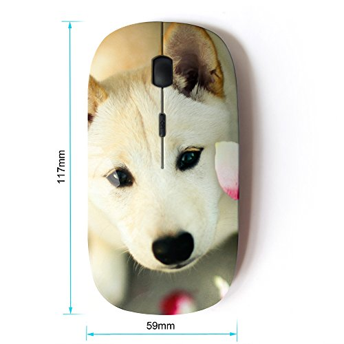 KOOLmouse [ Optical 2.4G Wireless Mouse ] [ Great Pyrenees Canaan Dog Pet ]