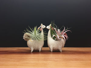 llama vase / cream and sugar