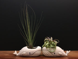 whale air plant vase / cream and sugar