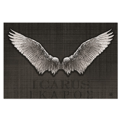 Icarus - digital art, wall art, canvas wrap, ready to hang