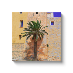 Proud palm trees of Ibiza - canvas wrap