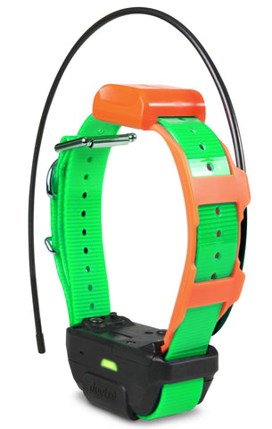 Dogtra Pathfinder TRX Collar Green