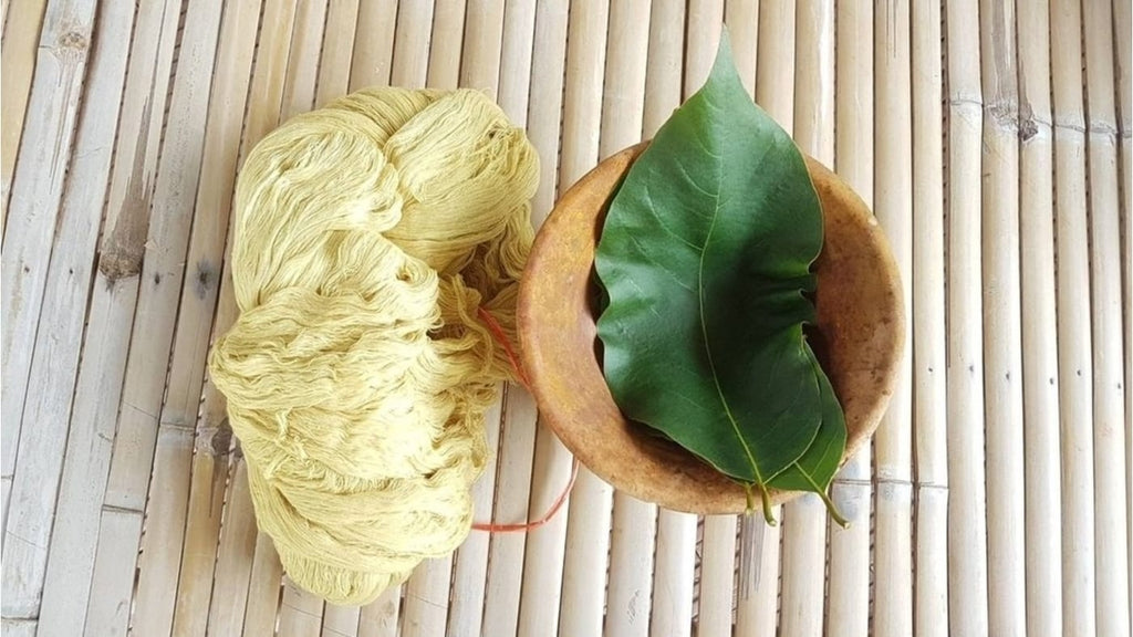 Sustainable cotton yarn naturally dyed by the Myrobalan tree leaf sat next to it - Rare & Fair