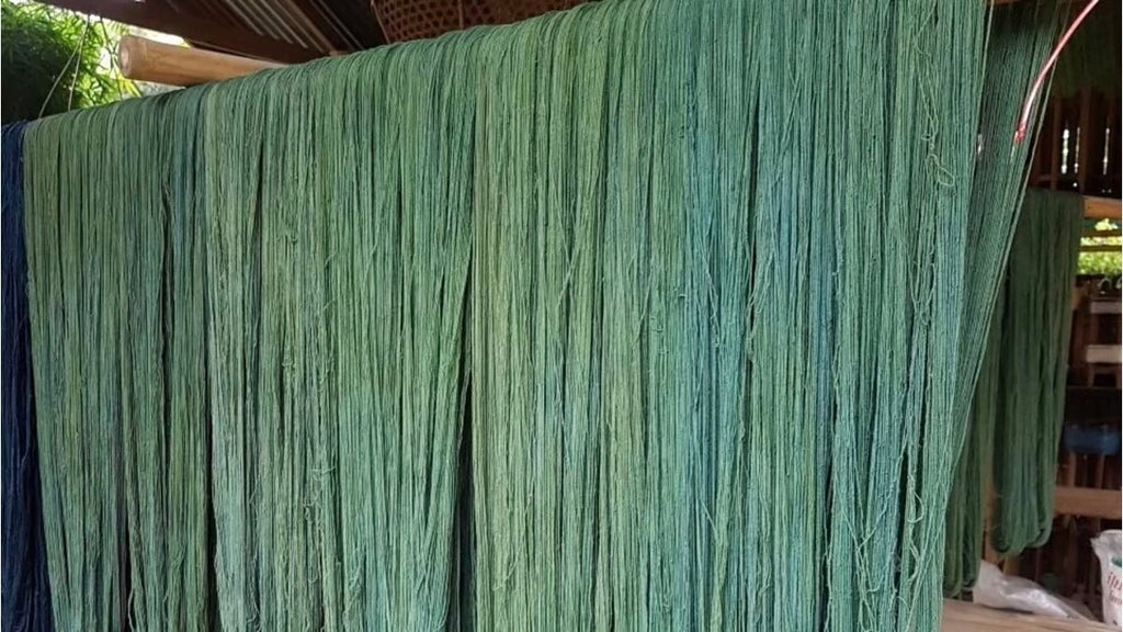 Sustainable cotton yarn drying after being naturally dyed olive green through plant-based dyes from Indigo and mryrobalan leaves at Tohsang Cotton Village - Rare & Fair