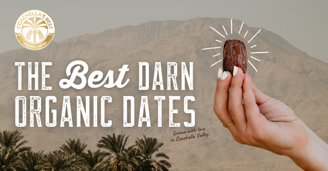 Dates are the Best Diabetes Superfoods