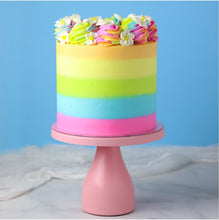 Rainbow Party Cake Kit and Tutorial by Sheri Wilson