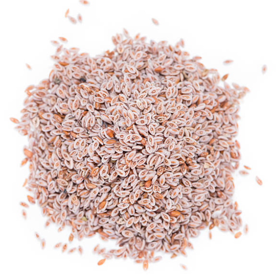 Whole Psyllium Husks (8 oz)