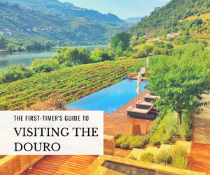 Visiting the Douro Valley