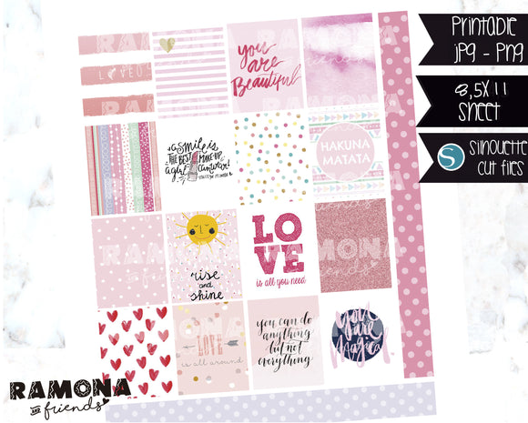 COD1123- Aesthetic stickers / Erin Condren planner stickers