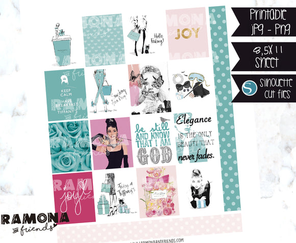 COD1124- Aesthetic stickers / Erin Condren planner stickers