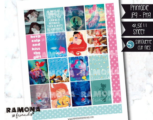 COD1210- Little Mermaid stickers / Erin Condren planner stickers