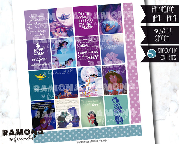 COD1211- Aladin stickers / Erin Condren planner stickers