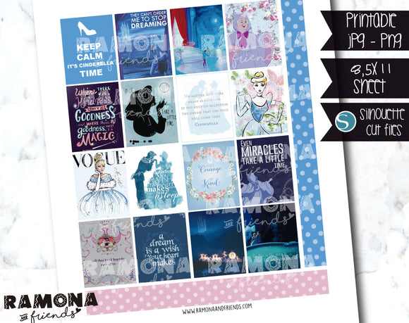 COD1212- Cinderella stickers / Erin Condren planner stickers
