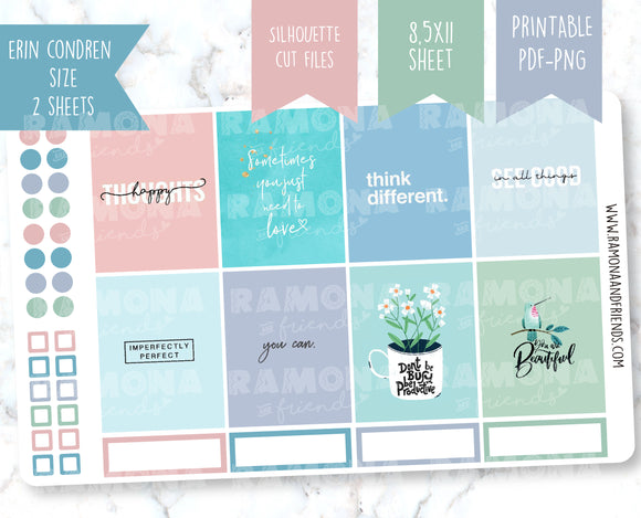 COD1225- Aesthetic stickers / Erin Condren planner stickers