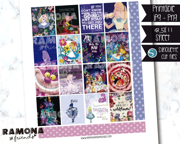 COD1244- Disney stickers / Erin Condren planner stickers
