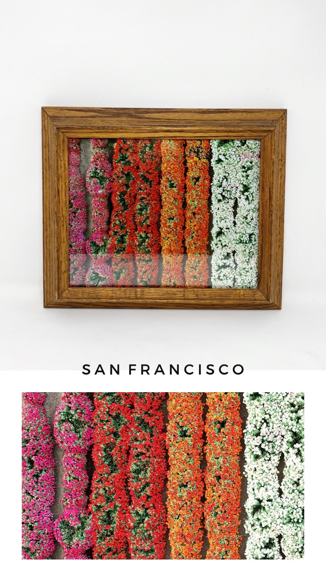 FRAMED 'SAN FRANCISCO' PRINT