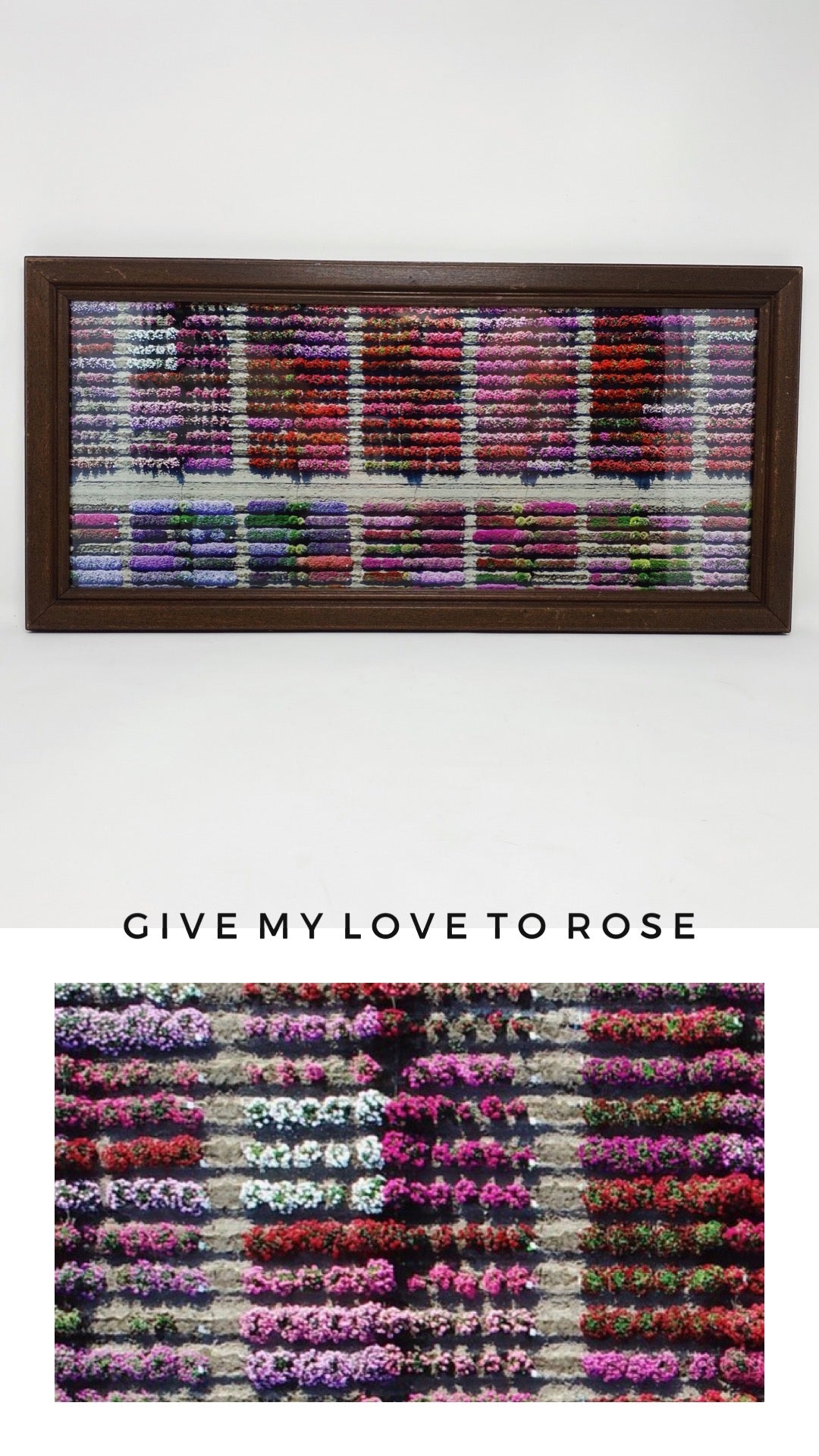 FRAMED 'GIVE MY LOVE TO ROSE' PRINT