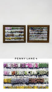 FRAMED 'PENNY LANE 4'  PRINTS (Set of 2)