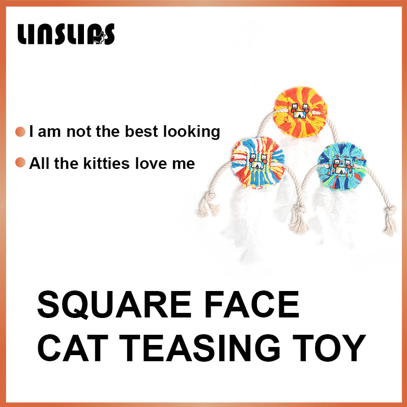 LINSLINS SQUARE FACE CAT TEASING TOY