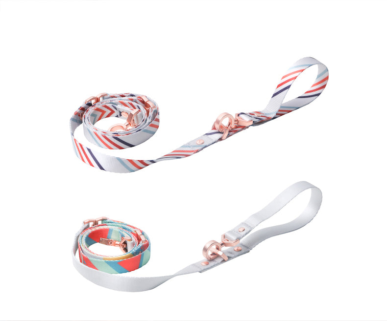 pidan Self-unwinding Dog Leash