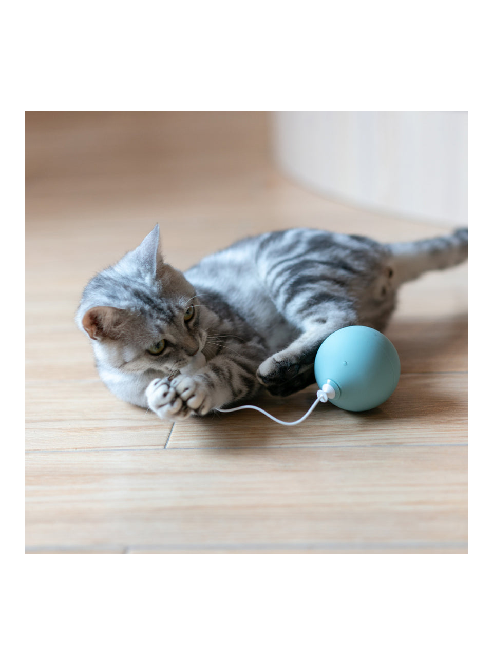 Balloon Cat Toy