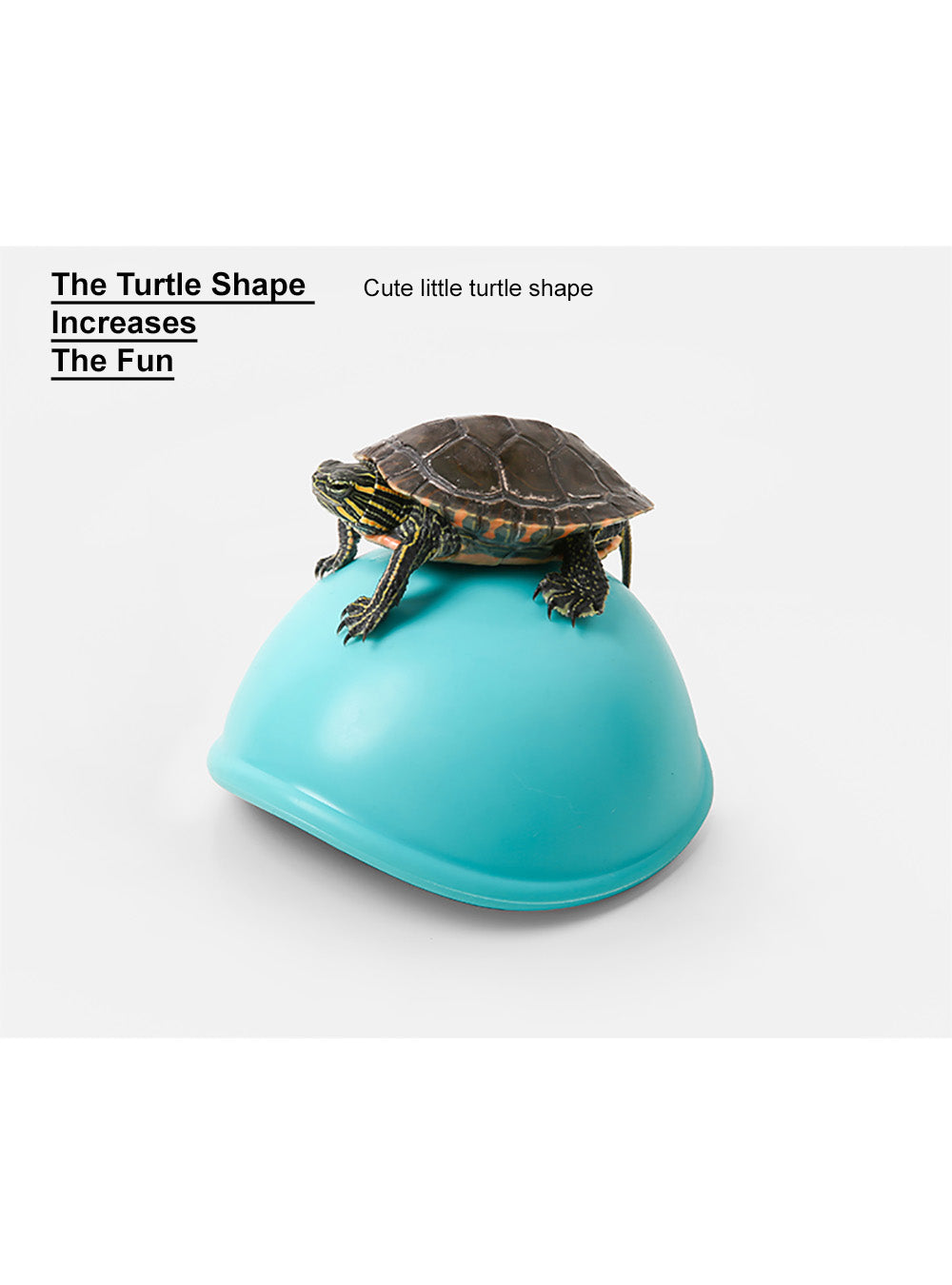 Dog Squeaky Toy - Turtle