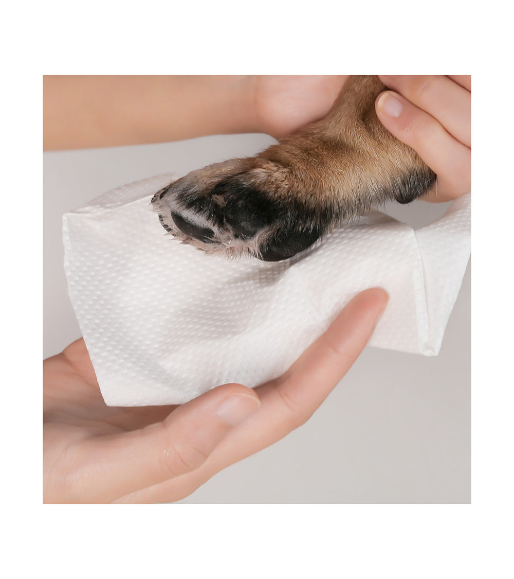 Pet Paw Cleaning Cube