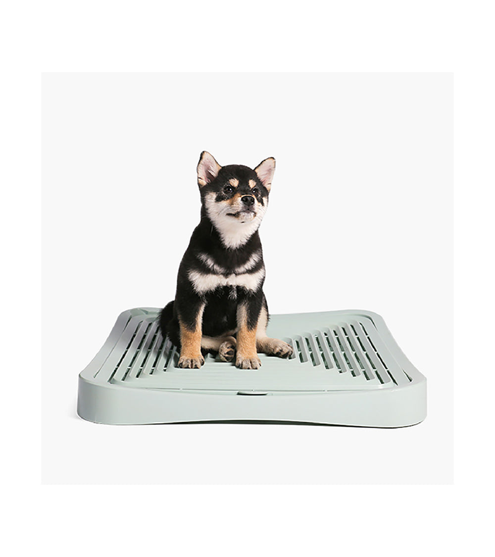 pidan Dog Potty Training Pad Holder