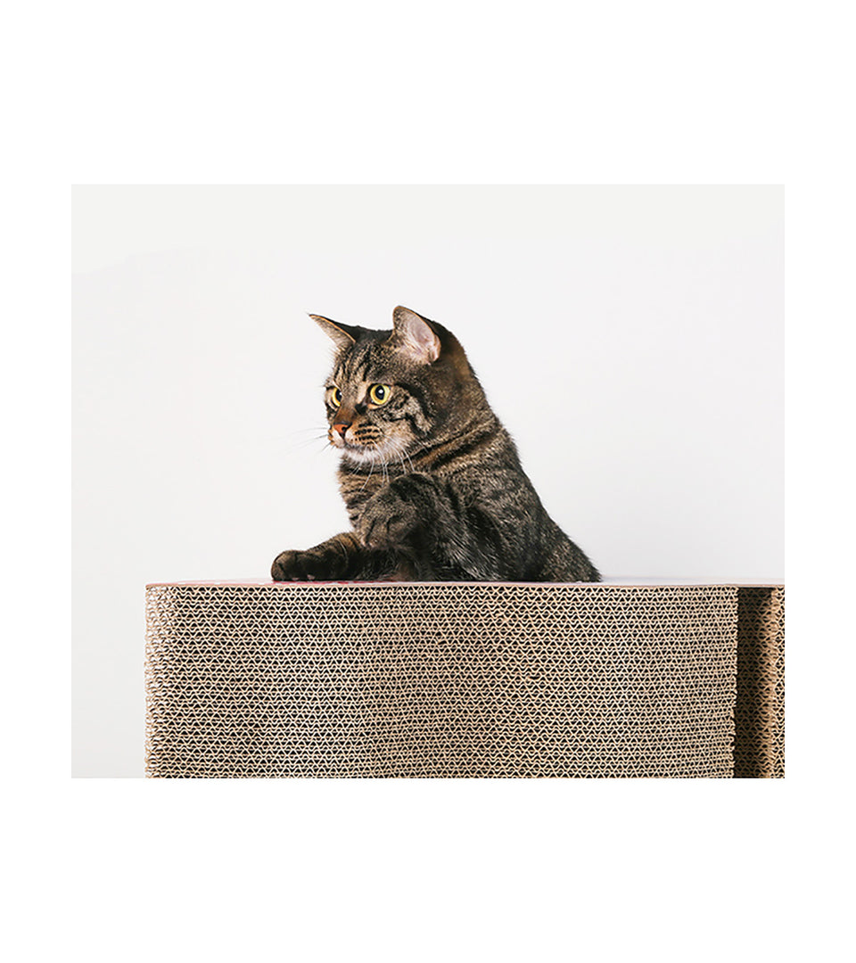 Cat Scratching Board - Memphis of Egypt - Triangle Style