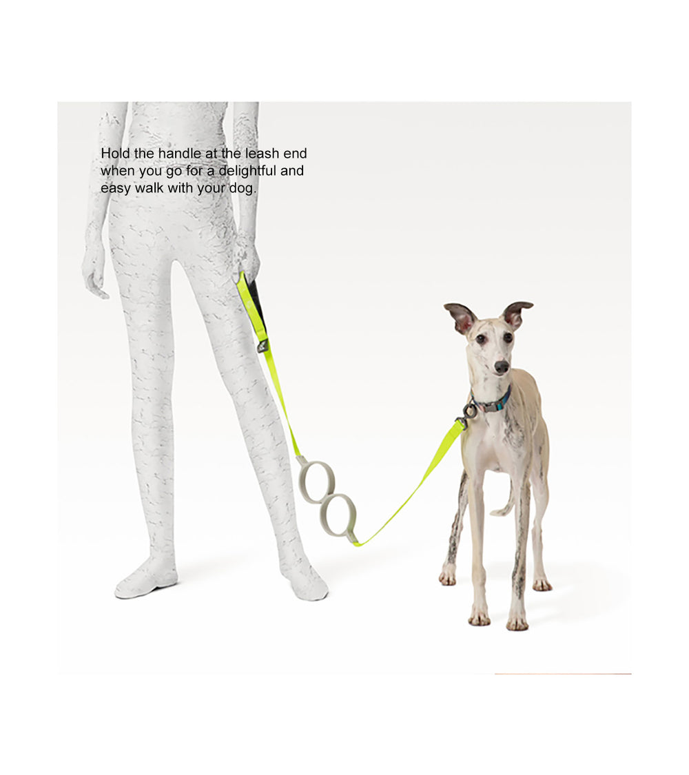 pidan Shock Absorbing Dog Leash